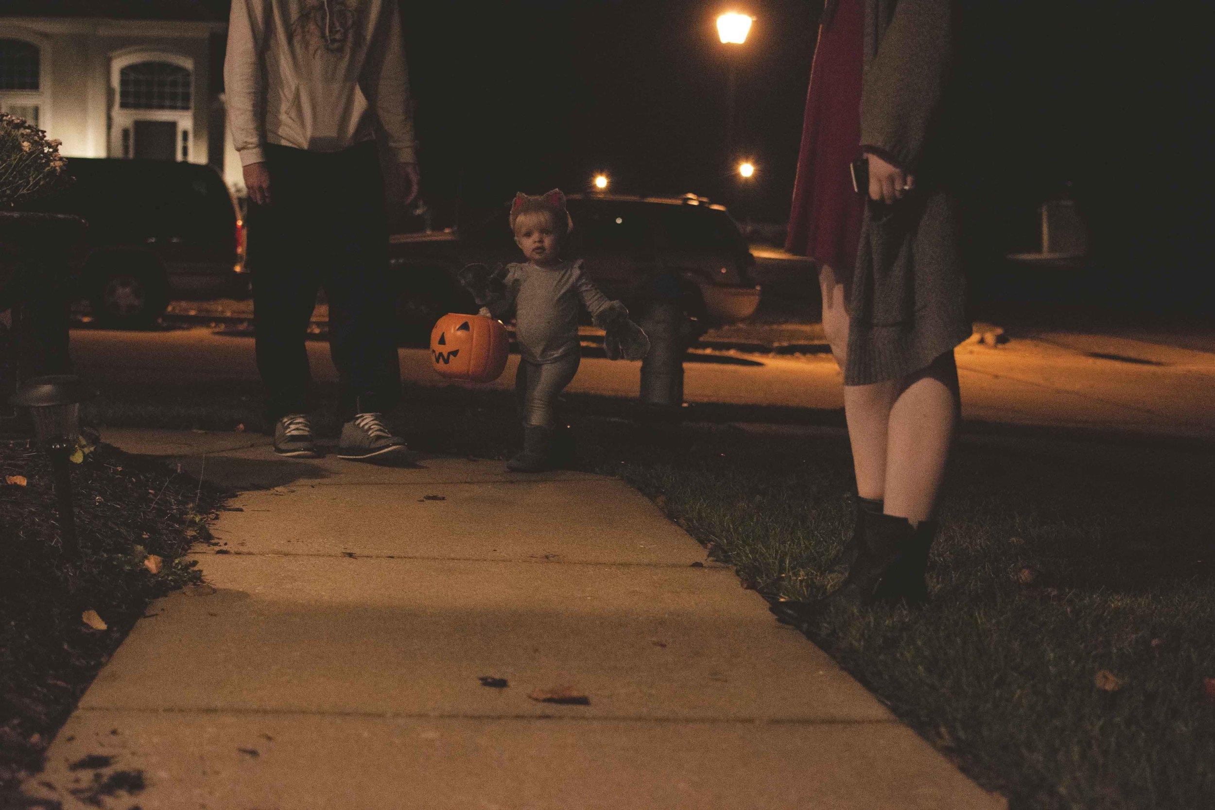 bailey18-halloween-2015.jpg