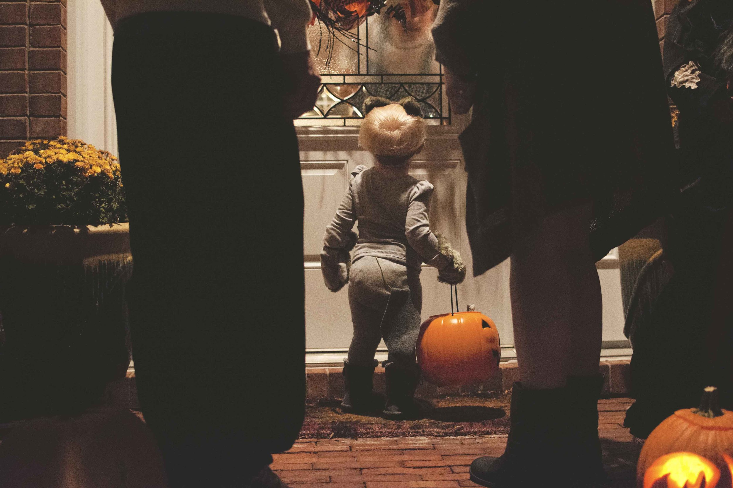 bailey19-halloween-2015.jpg