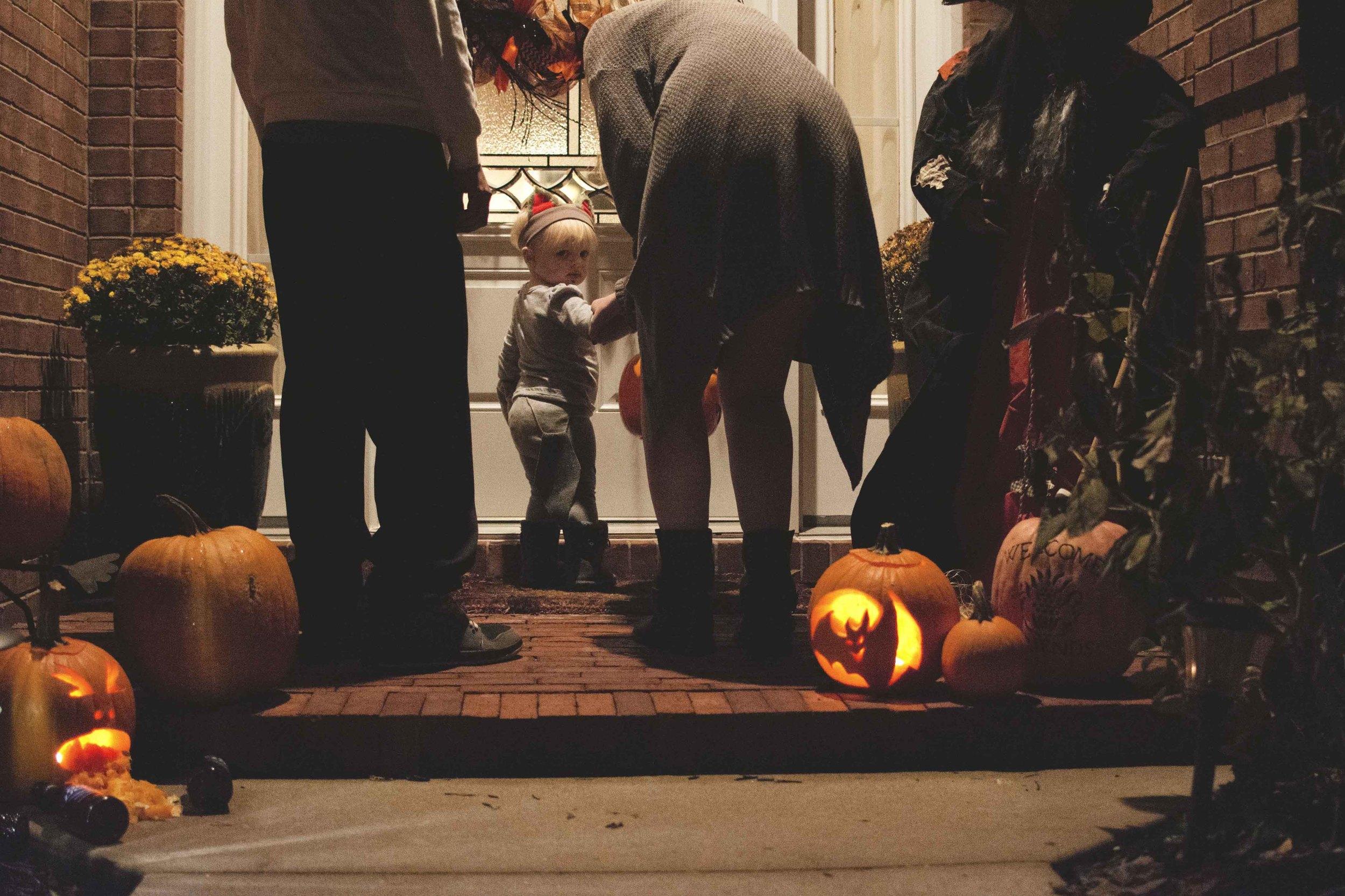 bailey20-halloween-2015.jpg