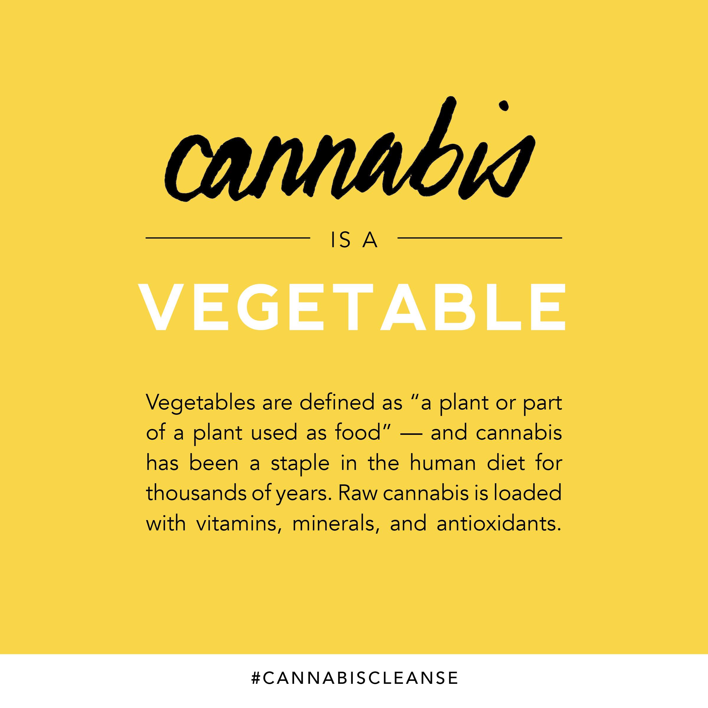instagram-cannabiscleanse4.jpg