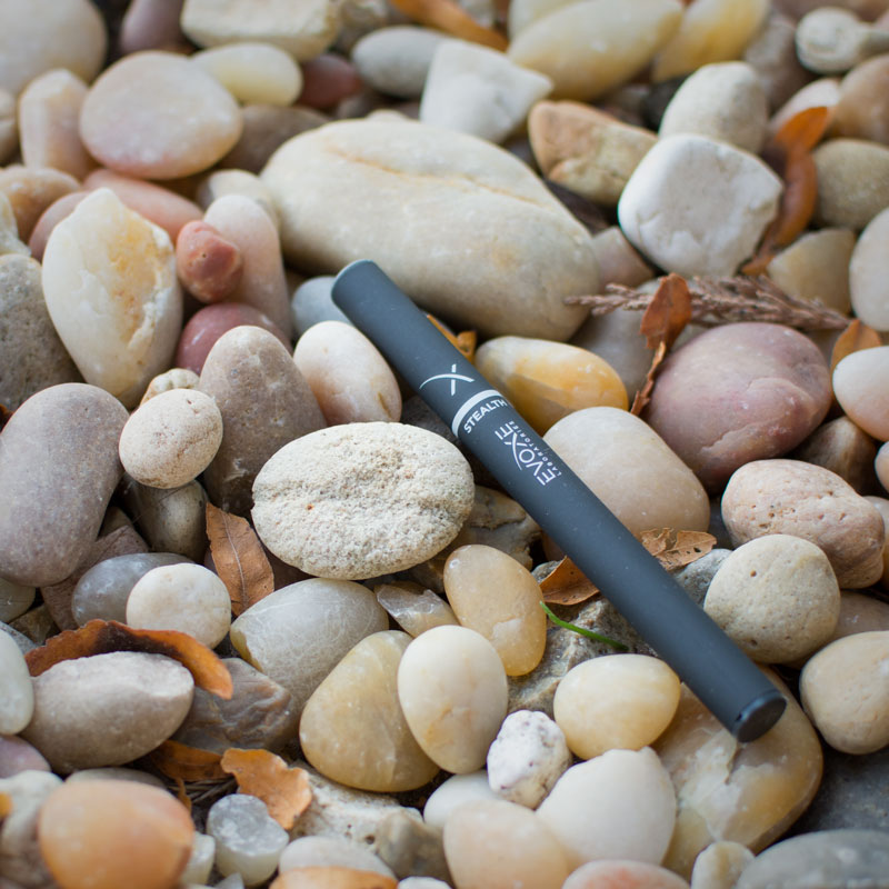 pebbles-stealth-evoxe-800px.jpg