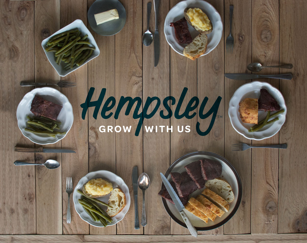 hempsley-kristen-williams-designs