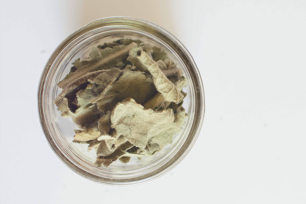 After several days of drying, I stored the leaves in a jar
