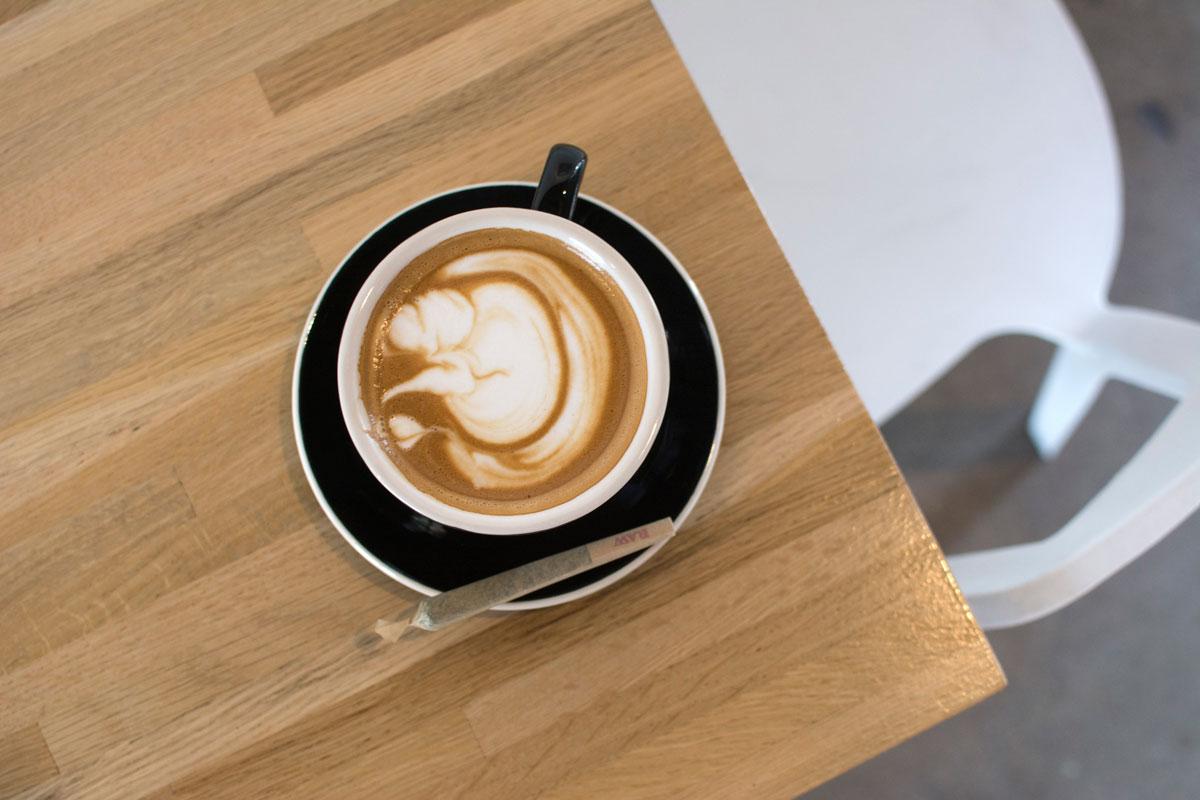 latte-vesta-1-thrive-jun2017.jpg