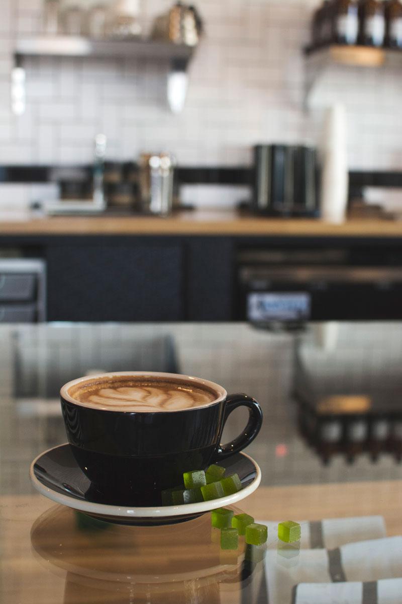 latte-vesta-3-thrive-jun2017.jpg