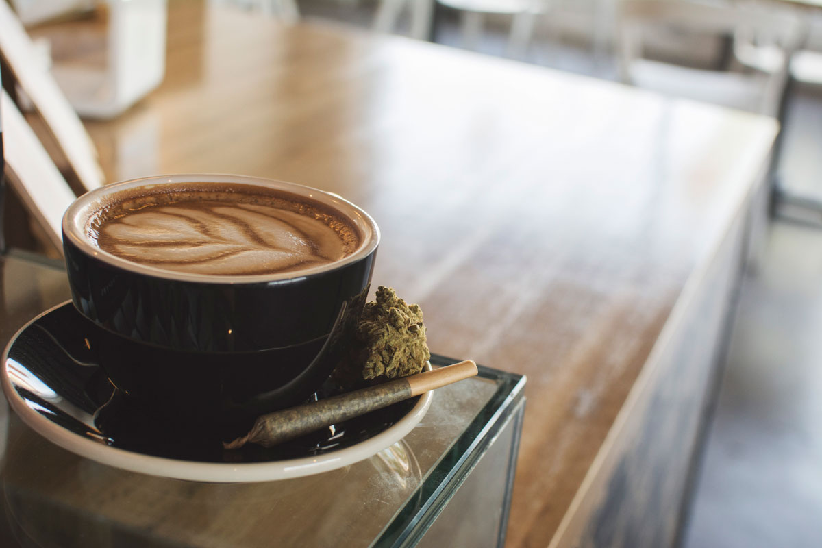 latte-vesta-5-thrive-jun2017.jpg