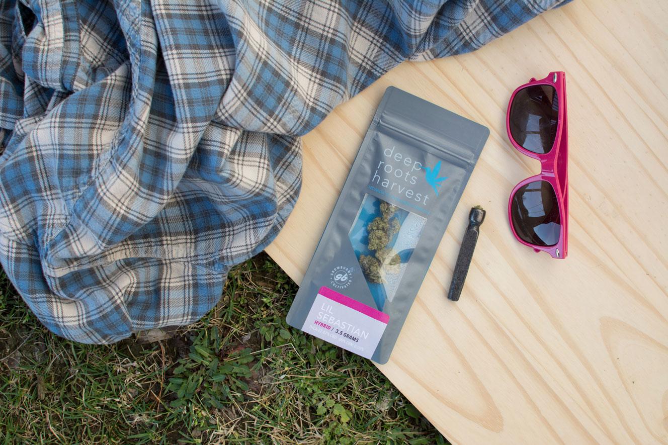 sunglasses-flannel-chillum-deeprootsharvest.jpg