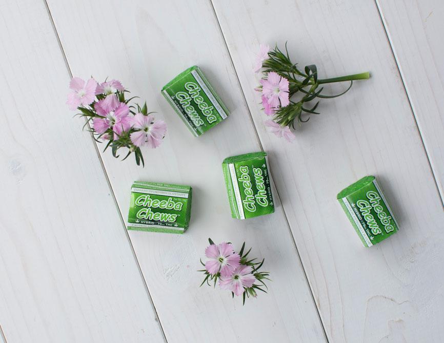 flowers-green-cheebachews.jpg