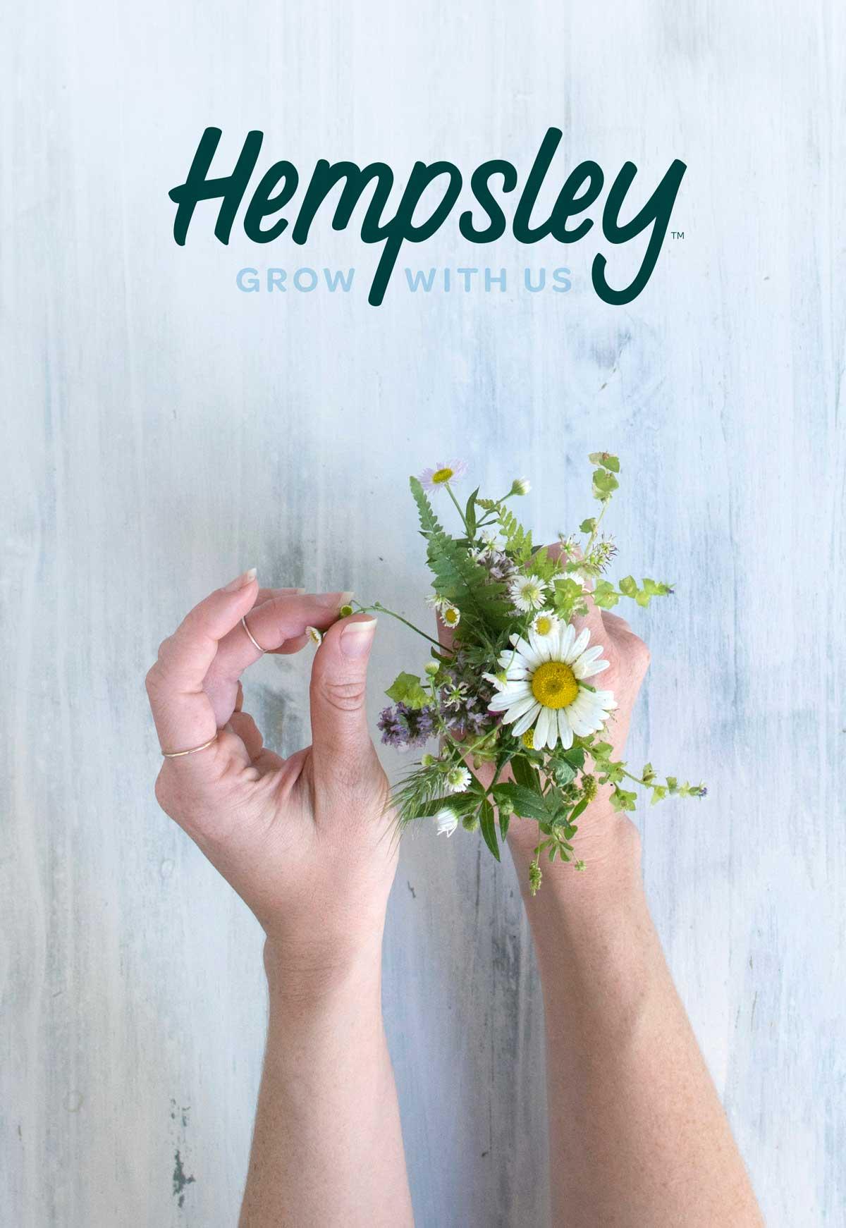 hempsley-cannabis-missouri-kristen-williams