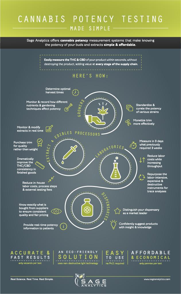 Sage Analytics,  Infographic Design 2017