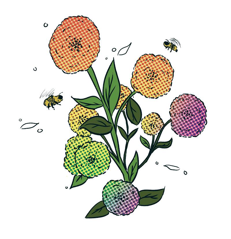 jarrybriefs_vegan_bees.png