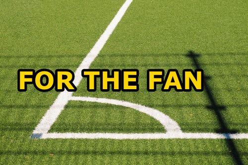 For the Fan.jpg