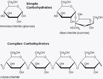DIAGRAM FROM http://haniazwan.weebly.com/carbohydrate