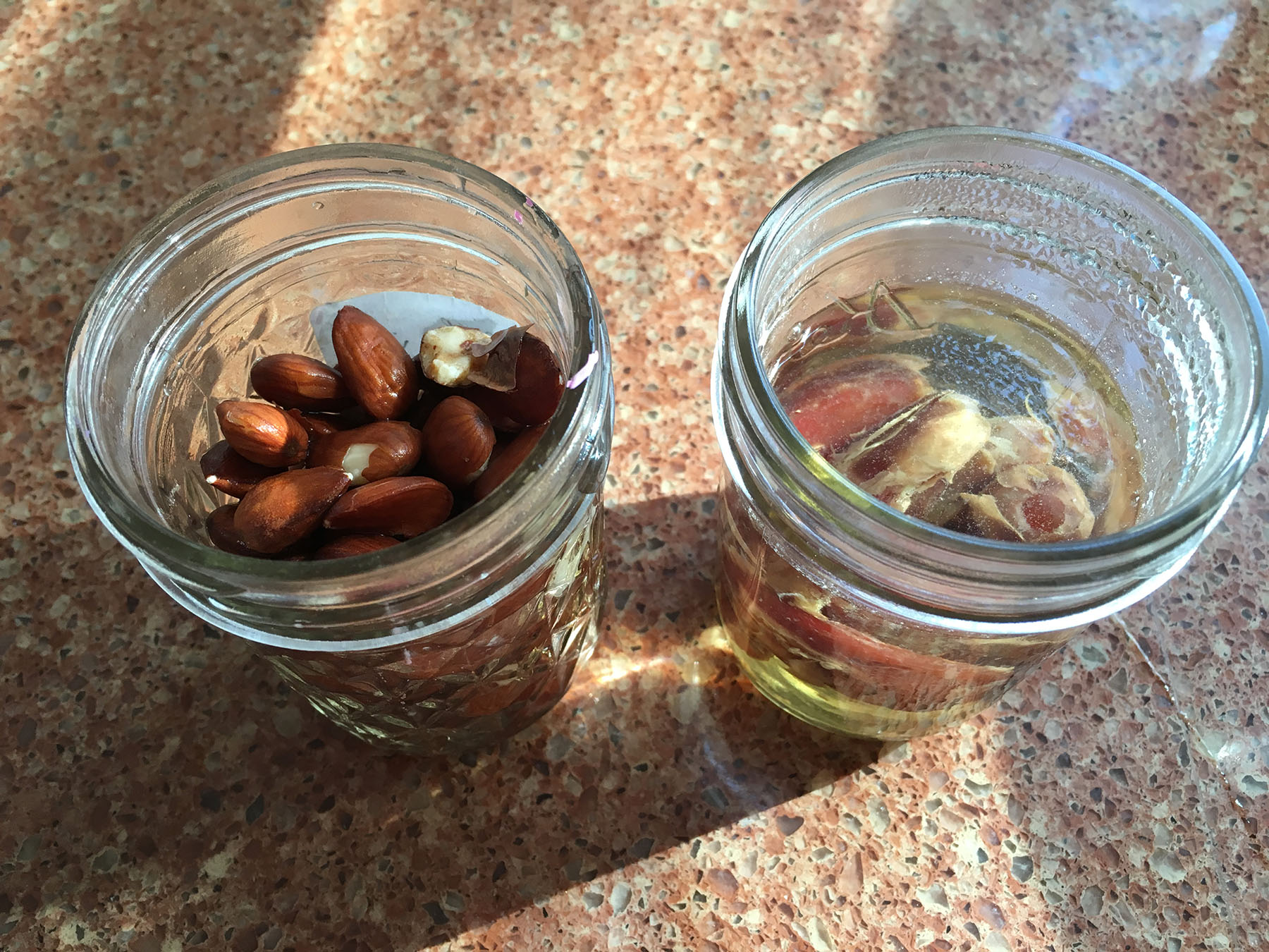 almonds_dates_soaking.jpg