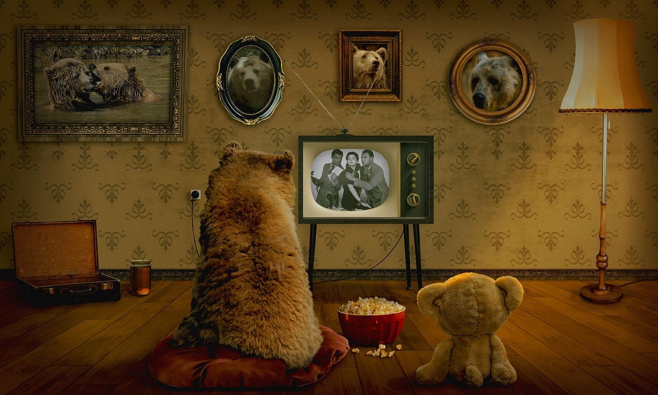 bear-3145874_1280.jpg