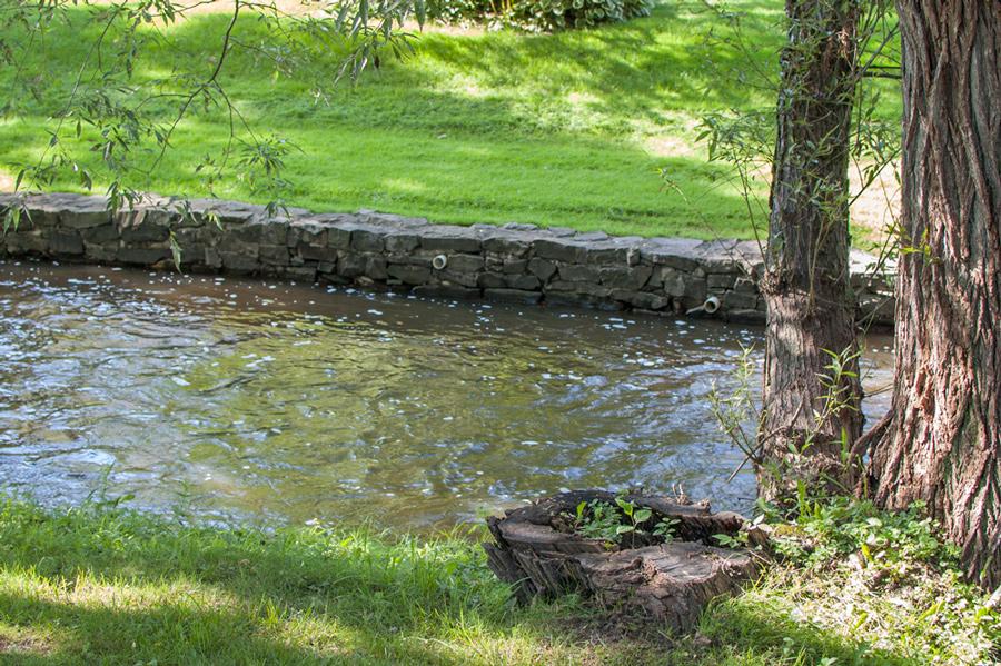 Allen's Creek