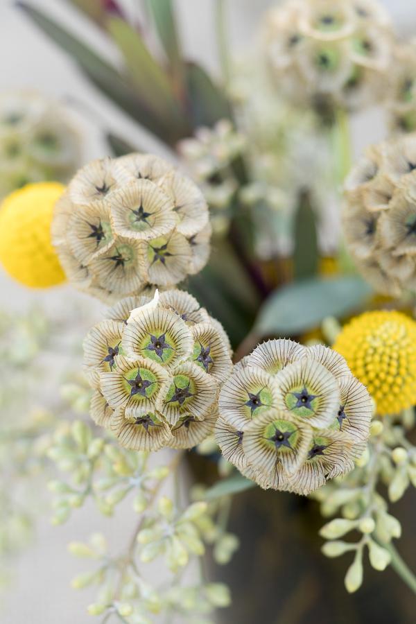 Flowers  | San Antonio Wedding Photographer