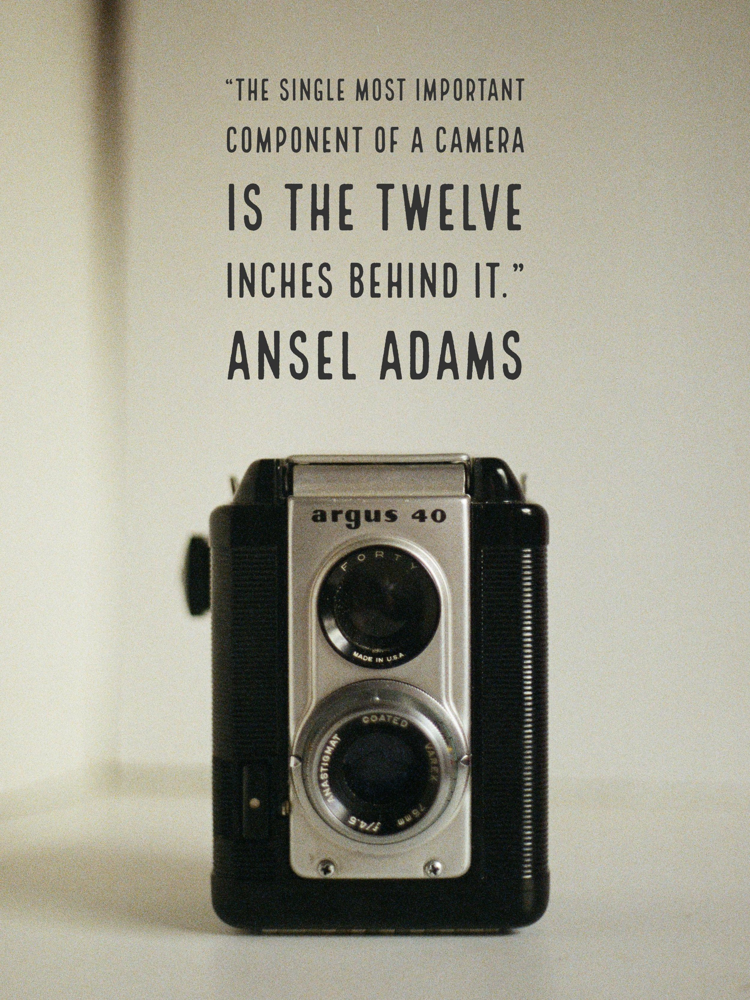 """""""The single most important component of a camera is the twelve inches behind it."""" - Ansel Adams"""