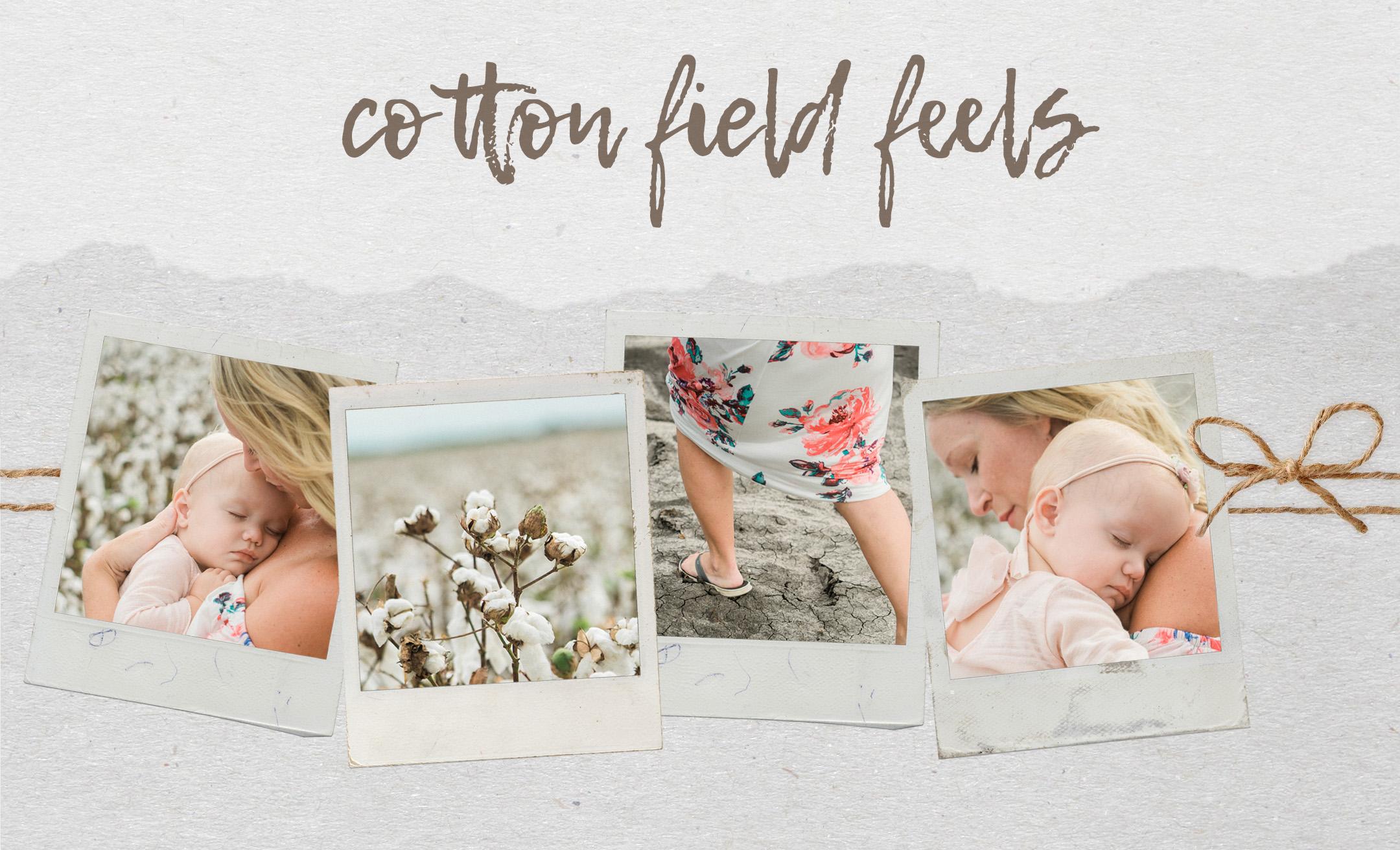 san-antonio-cotton-field-collage.jpg