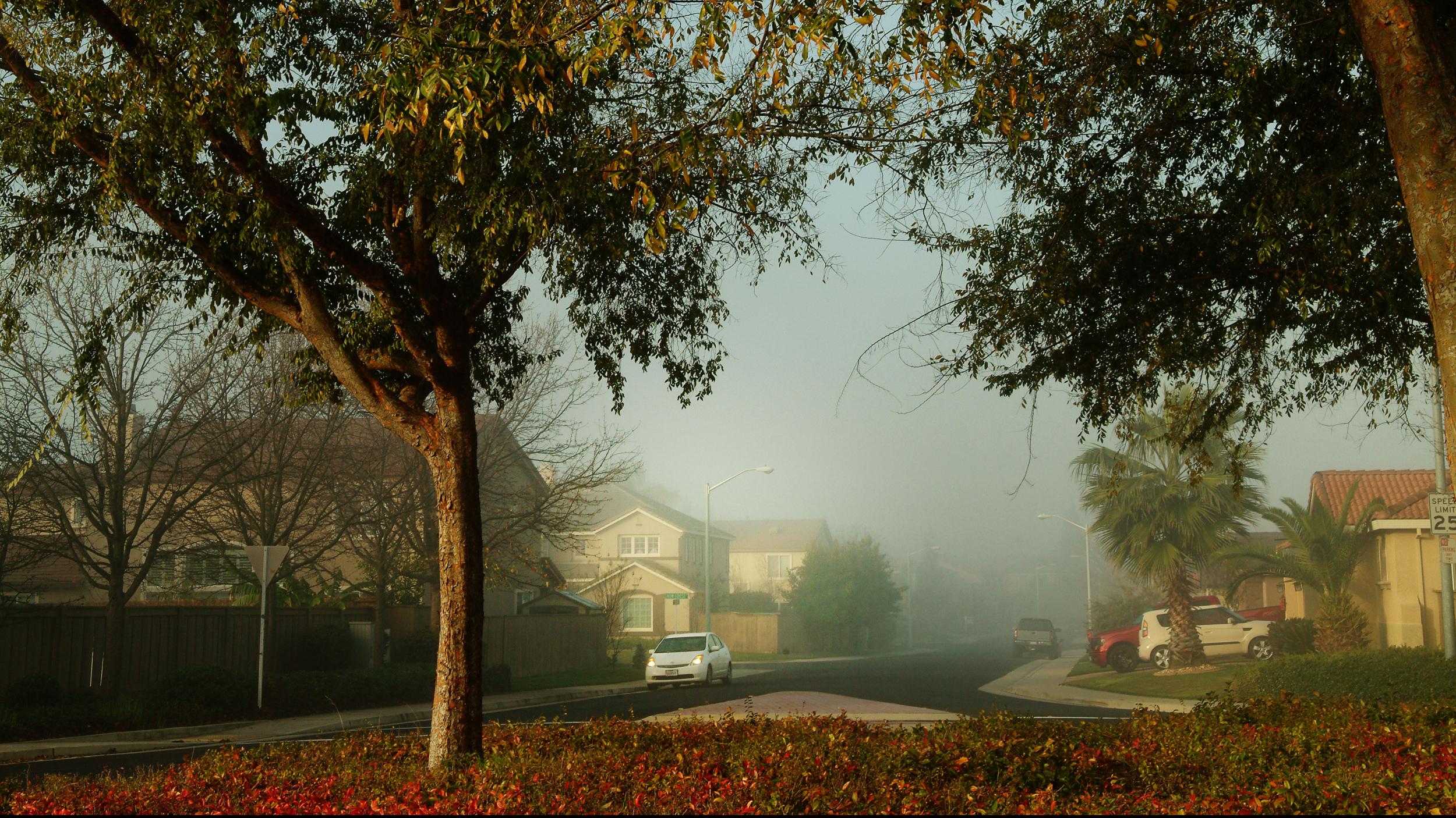 Roseville ca homes for sale 2.jpg