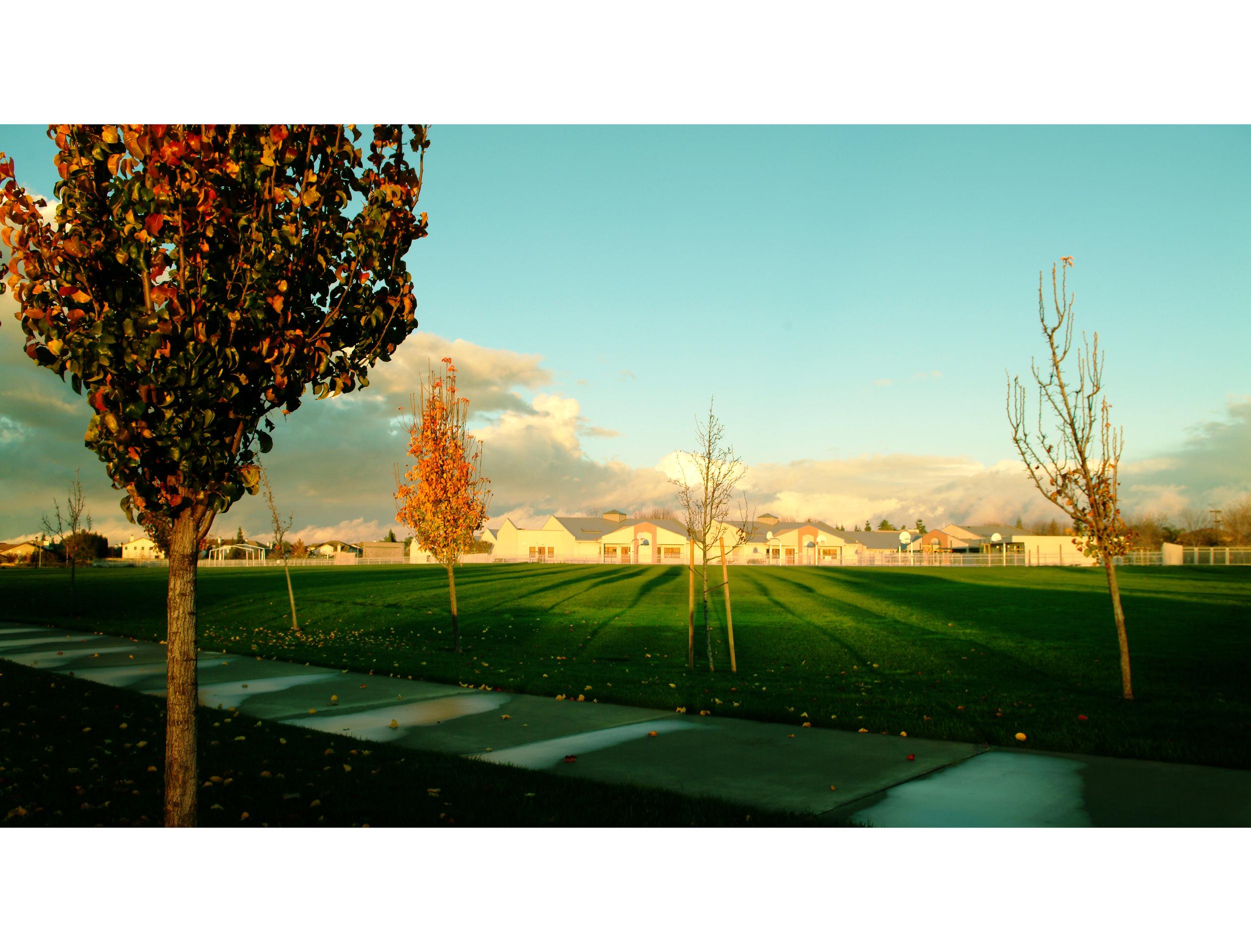 Roseville CA Elementary School.jpg