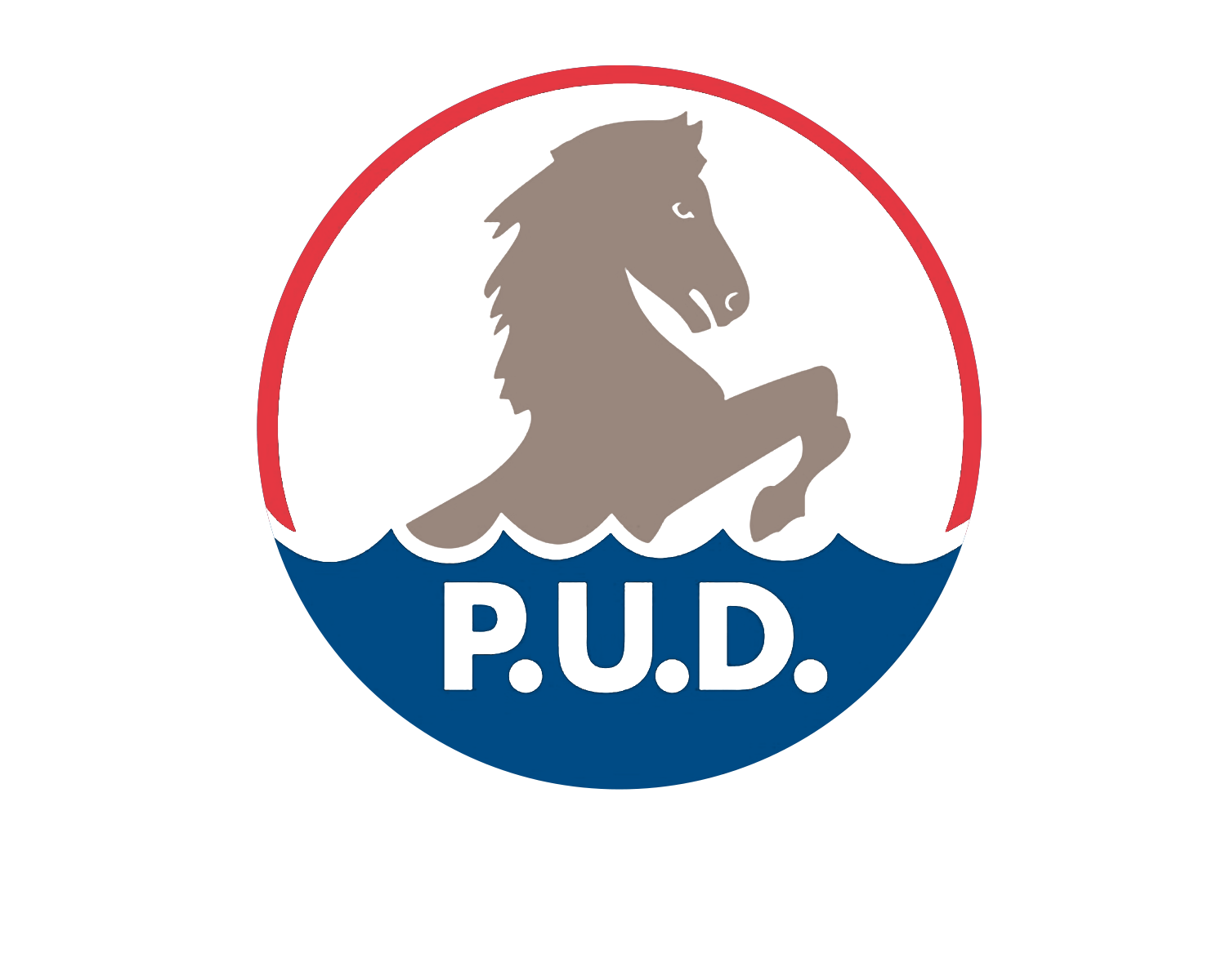Chelan-County-PUD_Logo.png