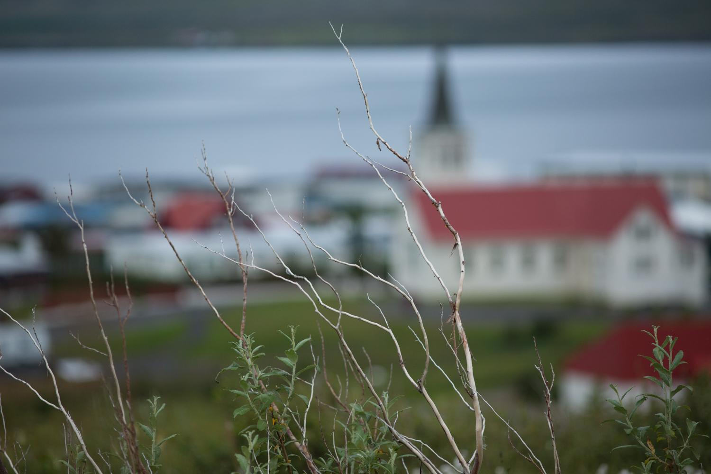 Iceland2-Edits1500px-46.jpg