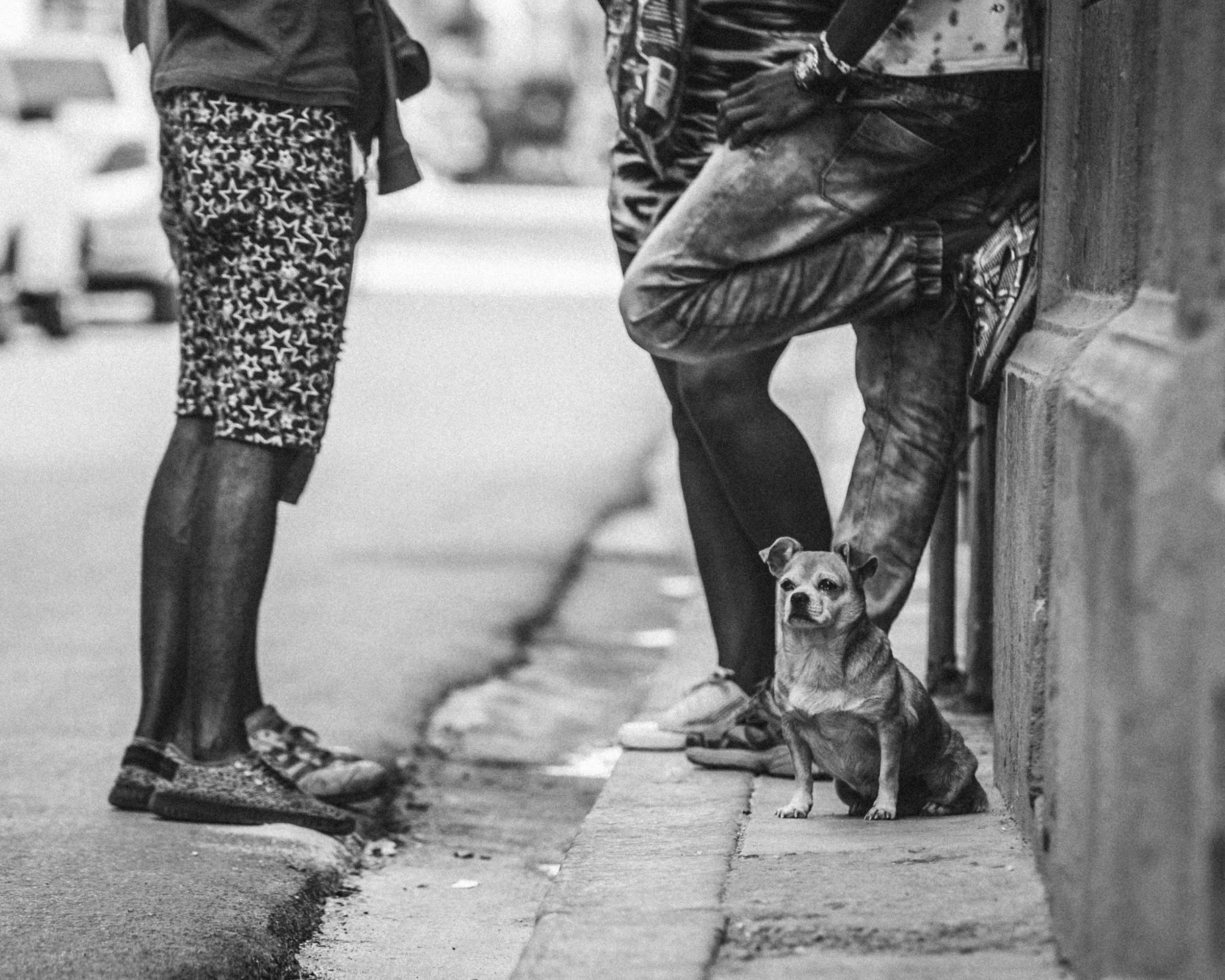 Cuba-davidbraud-0788.jpg