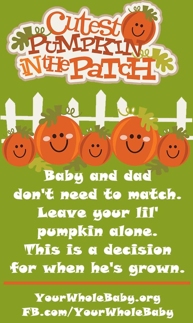 PumpkinPatchMemeJpeg.jpg