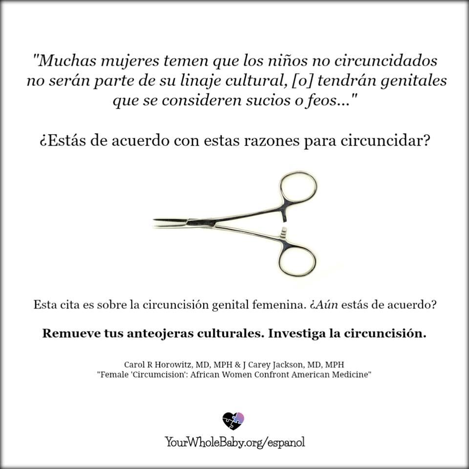 spanish 7.jpg