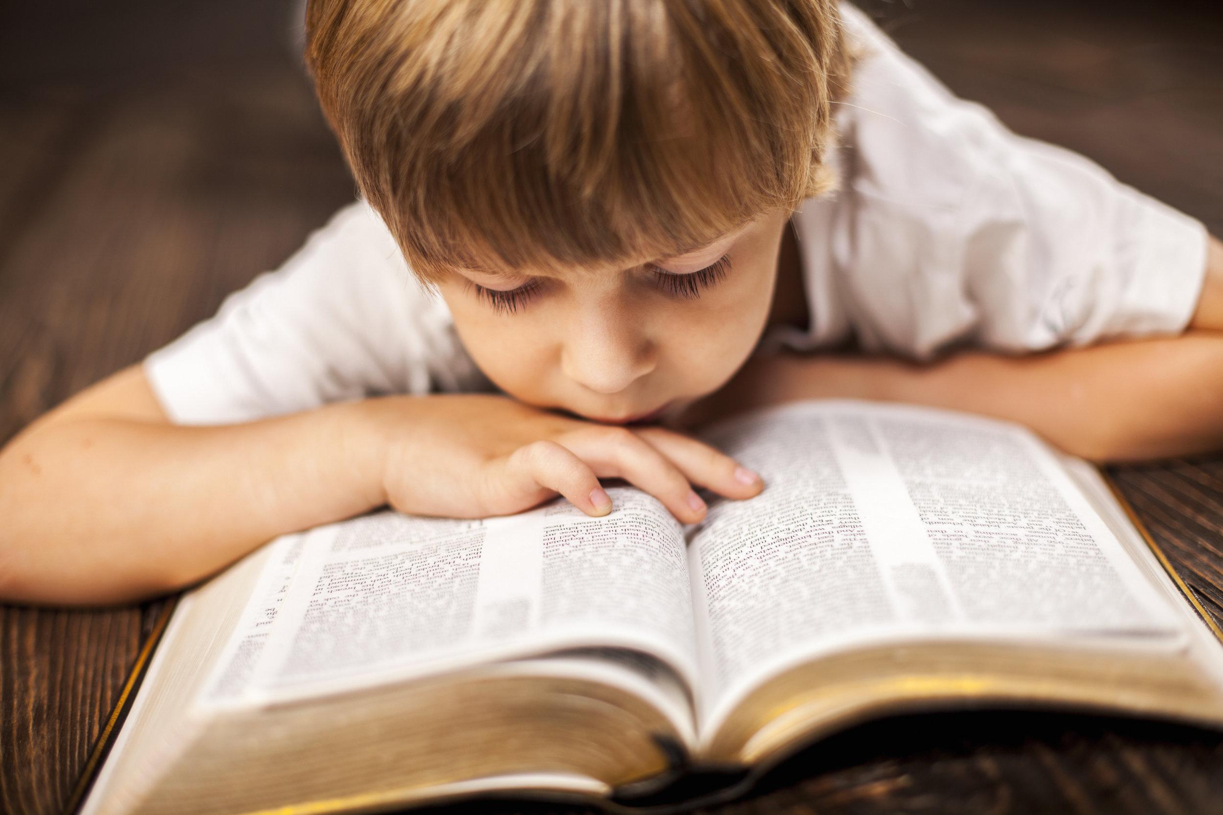 bigstock-little-boy-studying-the-script-80780252.jpg
