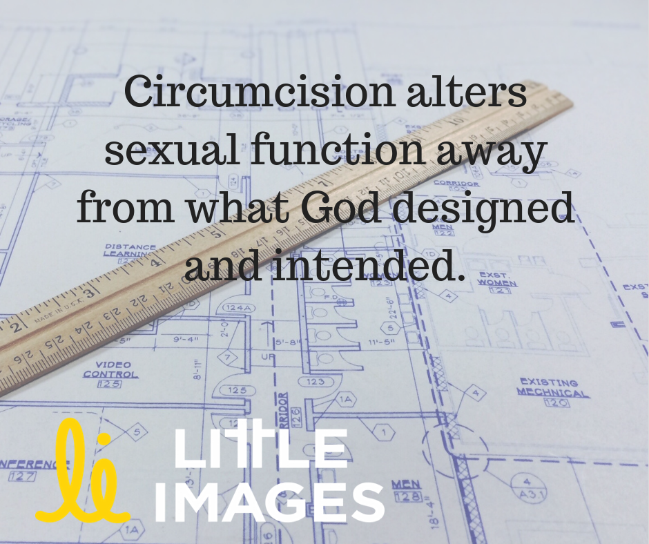 "Image: Blueprints spread out on a table with a wooden ruler across them. Text: ""Circumcision alters sexual function away from what God designed and intended. Littleimages.org"""