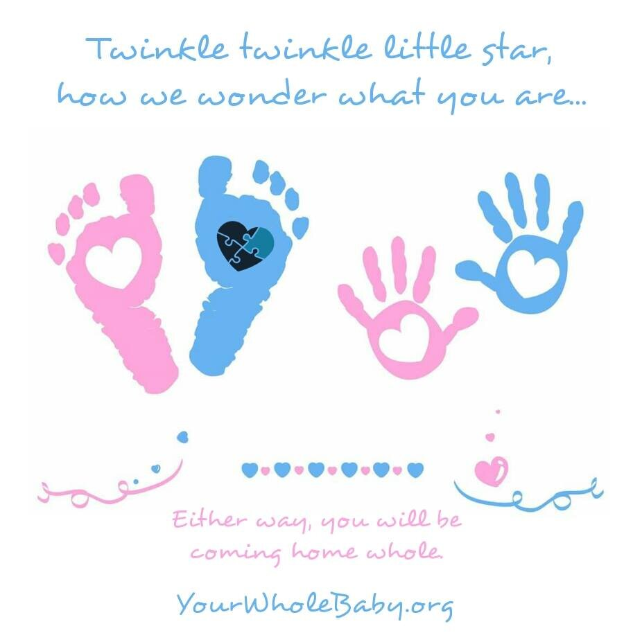 "A pair of baby footprints and baby handprints, one pink, one blue in each pair, with hearts in their centers. Text: ""Twinkle, twinkle, little star, how we wonder what you are…Either Way, you will be coming home whole. Yourwholebaby.org"""
