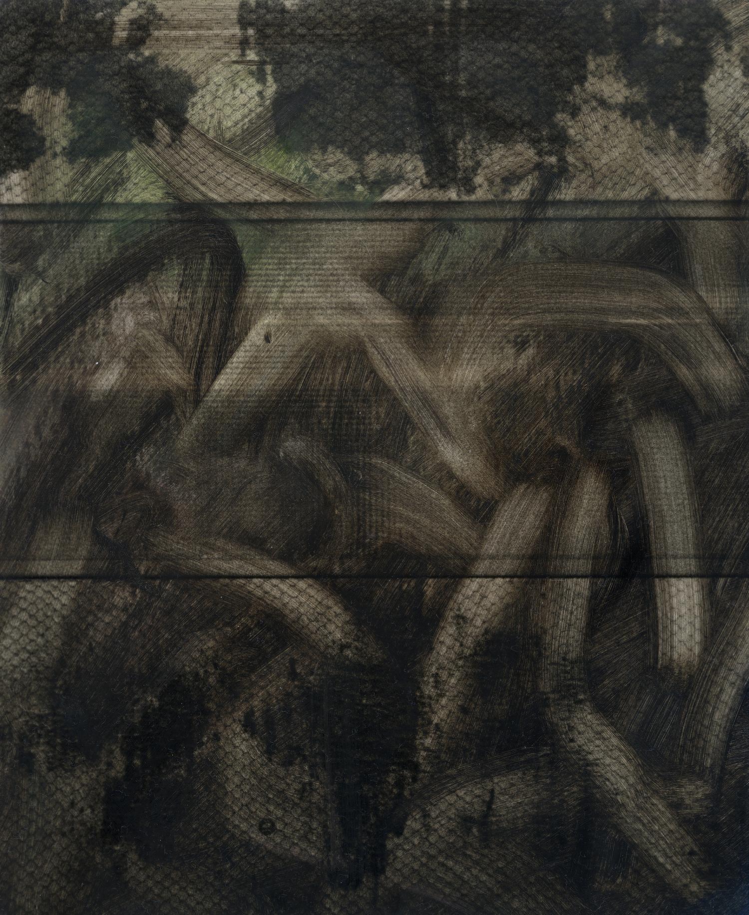 Prowl for safe prey, 2019 - oil on unique silver gelatin print22 x 18cm, 50.8 x 40.6cm framed$600 (framed)