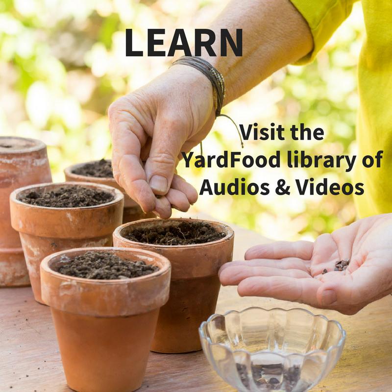 learn how to grow food