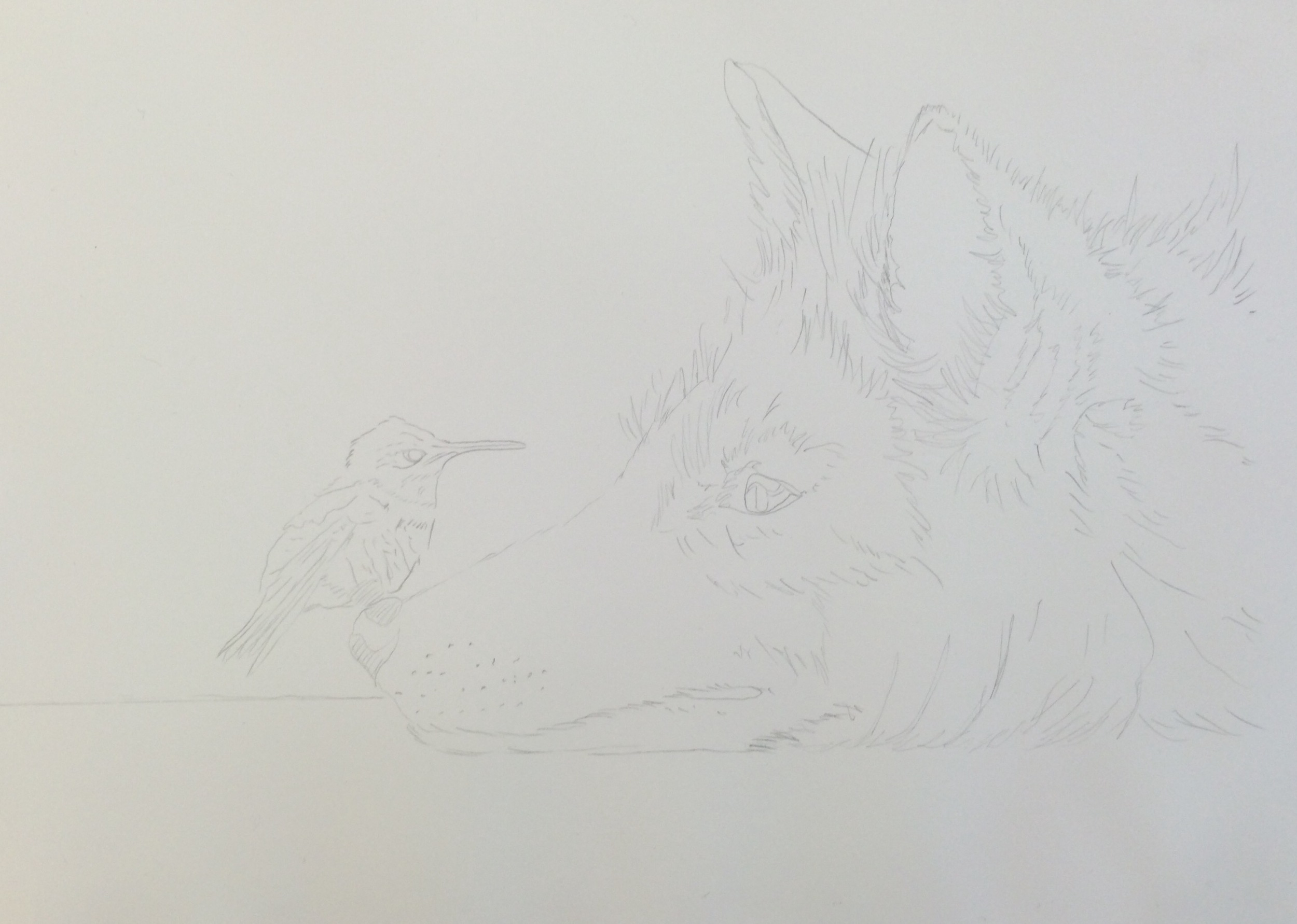 Line drawing done in pencil