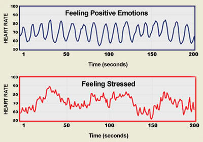 Heart Rate Variability: Coherence vs. Feeling Stressed