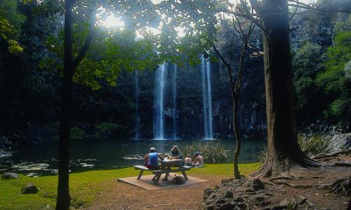 Whangarei-Falls.jpg