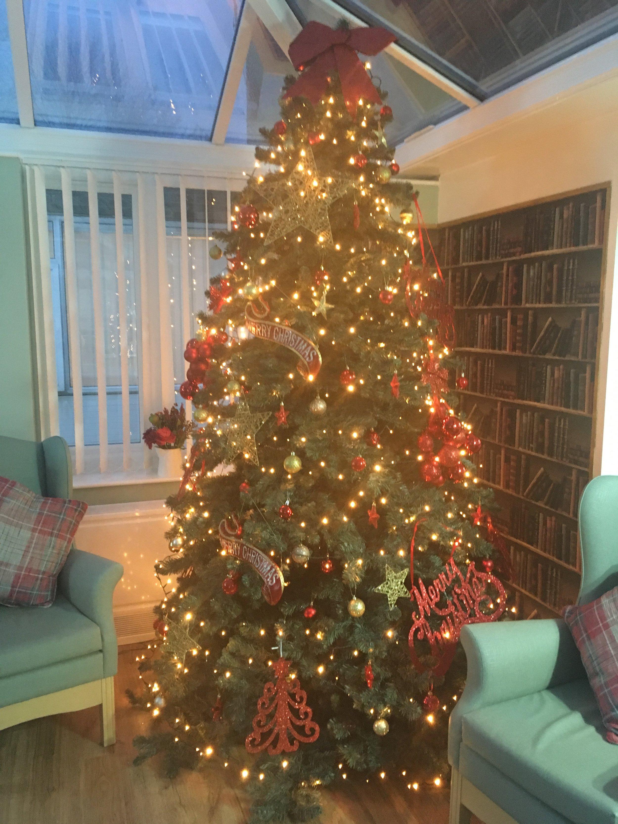 christmas tree winner.jpg