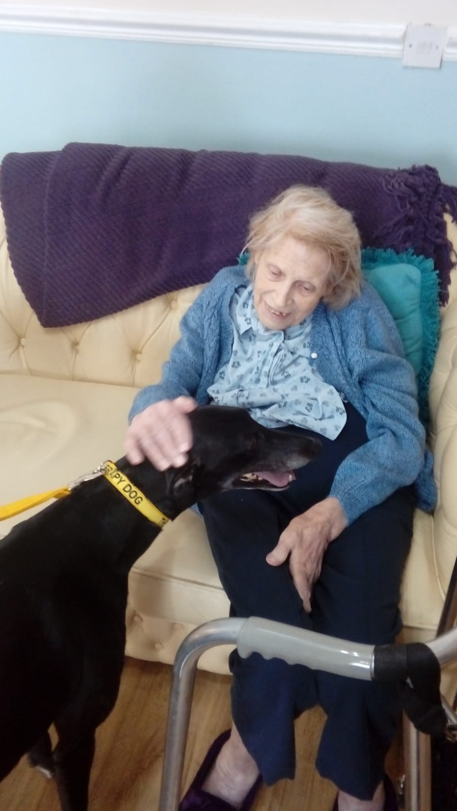 pet therapy alnwick.jpg