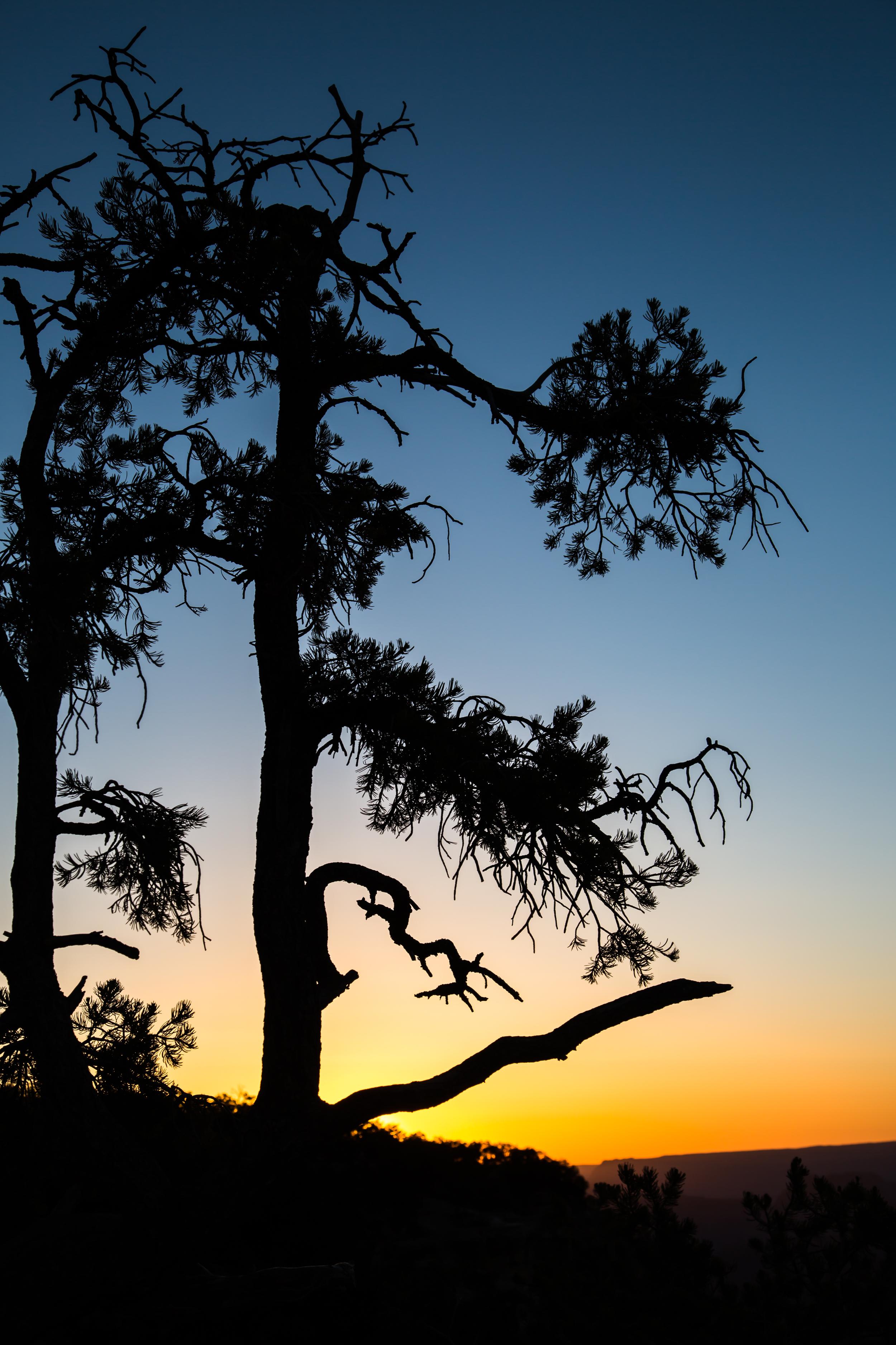 Sun sets at the Canyon.jpg