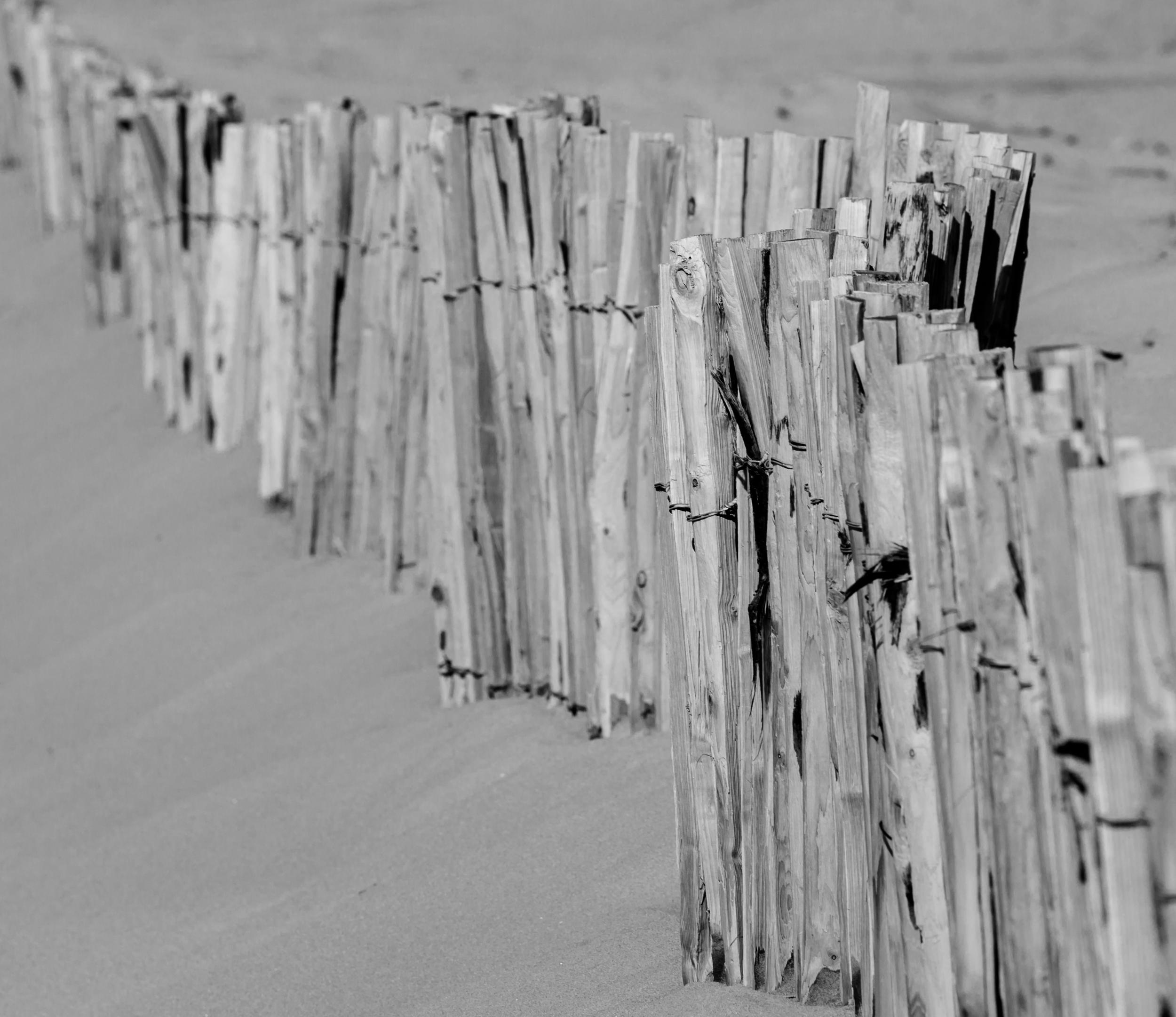 Beach fence.jpg