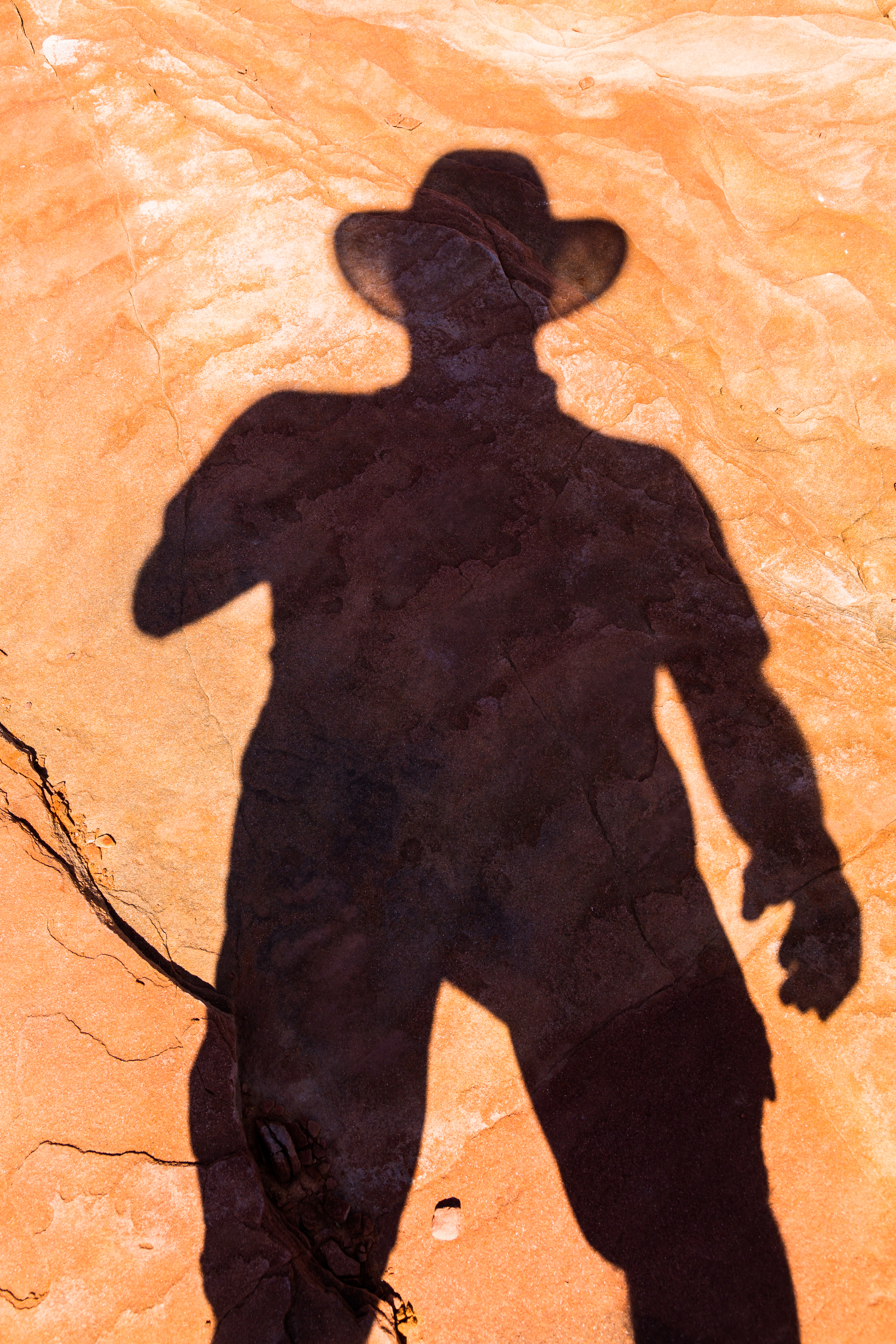 Shadow in the desert.jpg