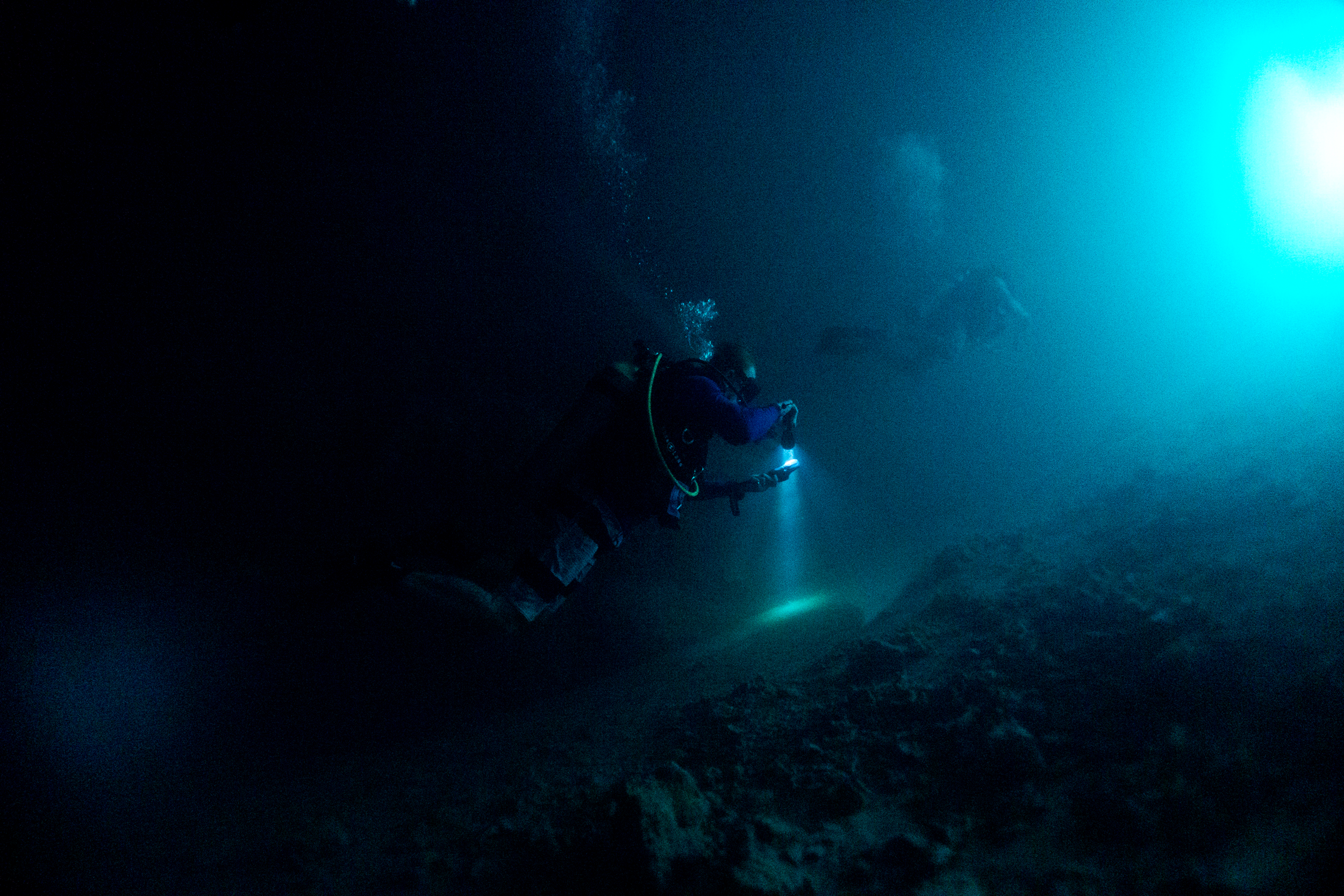 Justin Weiler Underwater photography_2.png