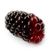 Waldo Blackberry