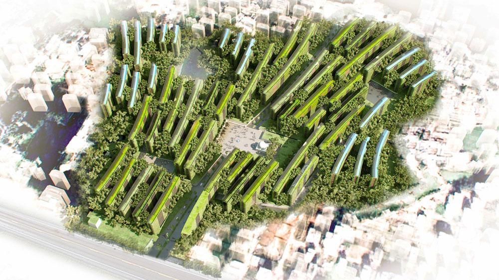 aerial_March6-copy.jpg