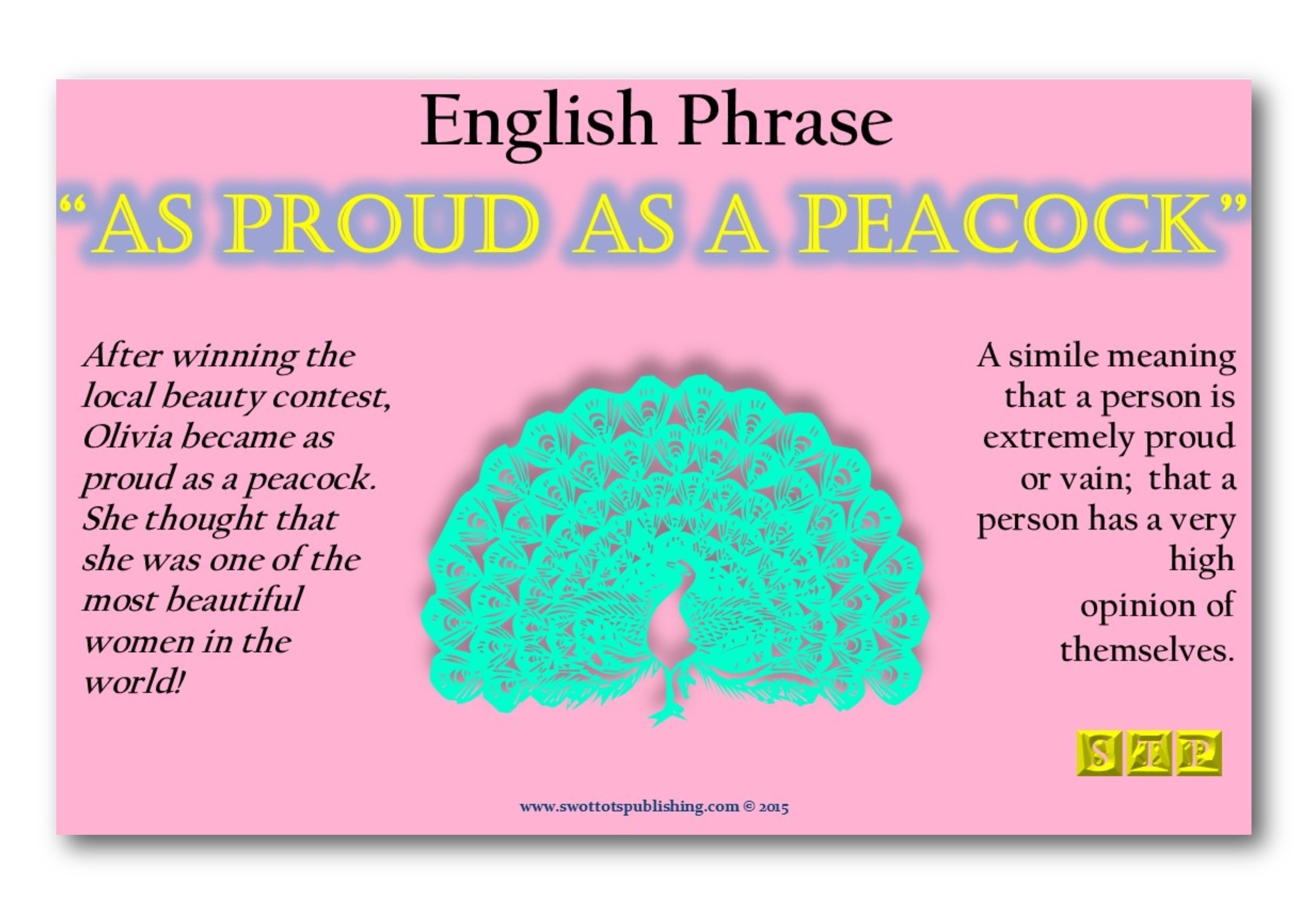 Vocabulary Infographic Gallery- Phrases-Bird 002.jpg