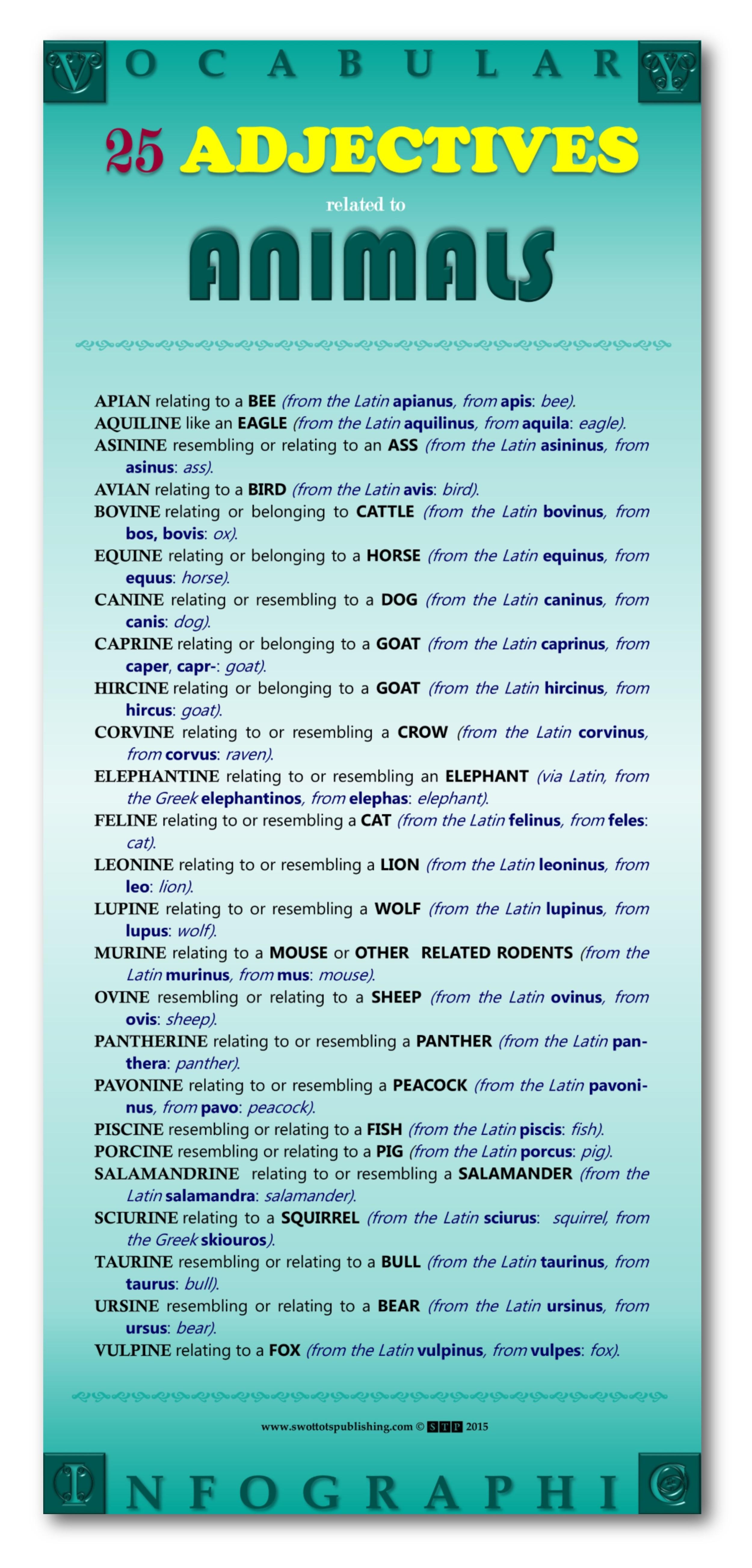 Vocabulary Infographic Gallery- WordBanks-Animal-Adjectives-001.jpg
