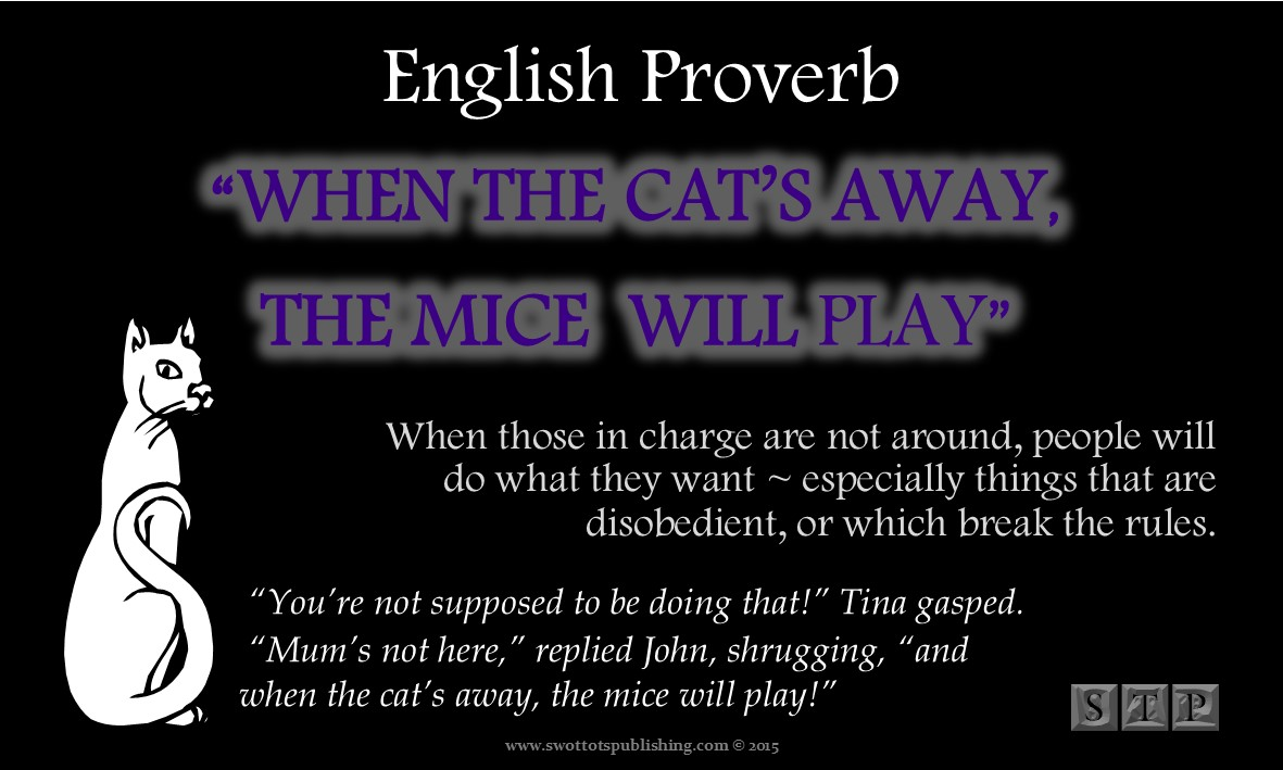Vocabulary Infographic-Proverbs, Phrases, & Idioms-Cat-001