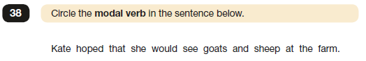 2019 SPaG Paper 1 Question 38.png